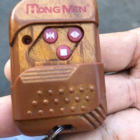 khóa điều khiển cổng xếp điện mongmen